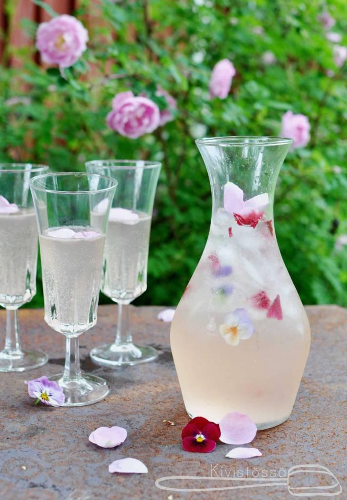 Summery punch with white Lillet, elder flower, rhubarb, lemon and club soda